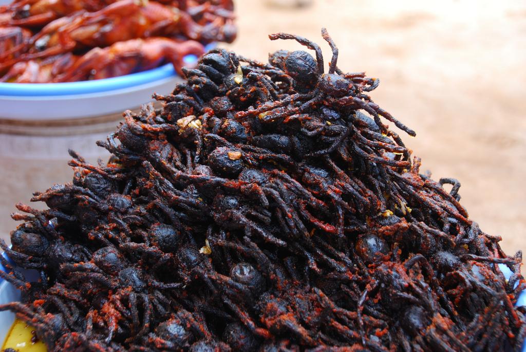 fried_tarantulas_Cambodia_MatthewStevens